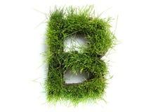 Cartas hechas de hierba Imagen de archivo libre de regalías