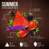 Cartaz abstrato do infographics do verão ilustração royalty free