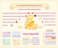 Cartaz bem sucedido da amamentação Molde de maternidade de Infographic fotografia de stock royalty free