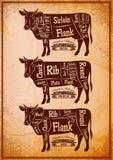 Cartaz com as três vacas diferentes do corte do diagrama ilustração royalty free