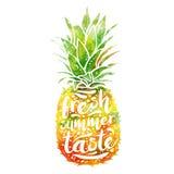 Cartaz com silhueta de um abacaxi, gosto fresco da aquarela do verão do tagline T-shirt da cópia, elemento gráfico para o seu Fotos de Stock Royalty Free