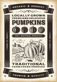 Cartaz da colheita da abóbora do vintage Imagem de Stock