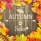Cartaz da tipografia da venda do outono Eps 10 Fotografia de Stock Royalty Free