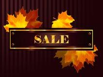 Cartaz da venda da queda do vetor Imagem de Stock Royalty Free