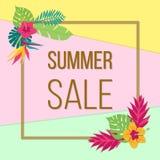 Cartaz da venda do verão com as folhas tropicais da cor ilustração royalty free