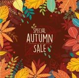 Cartaz da venda especial do outono com folhas Imagem de Stock Royalty Free