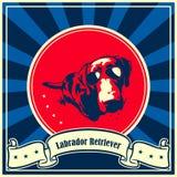 Cartaz do cão de labrador retriever Fotografia de Stock Royalty Free