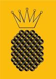 Cartaz do festival da dança do verão com registro do abacaxi e de vinil Sinal do partido da praia Ilustração do vetor da música ilustração royalty free