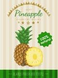 Cartaz do vetor com um abacaxi Imagem de Stock Royalty Free