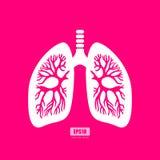 Cartaz do vetor da anatomia dos pulmões Imagens de Stock