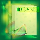 Cartaz orgânico do molde Ilustração do vetor Fotografia de Stock Royalty Free