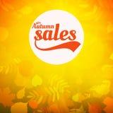 Cartaz realístico da tipografia das folhas da venda do outono Imagem de Stock