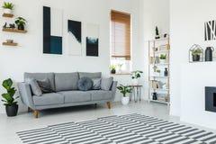 Cartazes preto e branco acima do sofá cinzento no interior da sala de visitas foto de stock