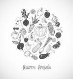 Carte avec des fruits et légumes de griffonnage sur le fond blanc Illustration de croquis de vecteur de nourriture saine Image libre de droits