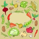 Carte avec des légumes Images stock