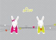 Carte avec des lapins dans l'amour Photographie stock libre de droits