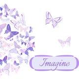 Carte avec des papillons disposés dans le demi-cercle Images stock
