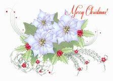 Carte avec la poinsettia blanche Images stock