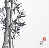 Carte avec le bambou sur le fond blanc Image libre de droits