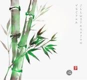 Carte avec le bambou vert dans le style de sumi-e Photographie stock libre de droits