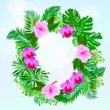 Carte avec les feuilles tropicales de fleurs, de paume et de banane illustration libre de droits