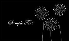 Carte Avec Les Fleurs Abstraites Pissenlits De Visite Professionnelle Noire Et Blanche Illustration Vecteur