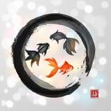 Carte avec trois poissons rouges Photos stock
