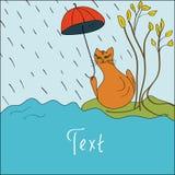 Carte avec un chat en automne Photographie stock libre de droits