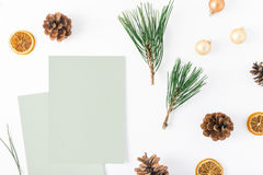 Carte in bianco, albero di Natale, pigne, arancia asciutta, Natale b Fotografia Stock