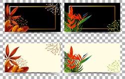 Carte in bianco e nero con i fiori rossi Fotografia Stock Libera da Diritti
