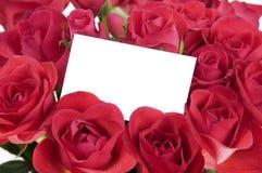 Carte blanche dans les roses Image libre de droits