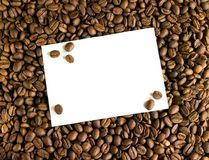 Carte blanche sur le fond des grains de café Photo stock