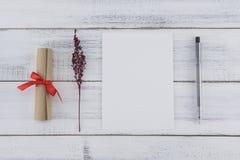 Carte blanche vierge, stylo noir et rouleau brun photos libres de droits