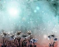 Carte bleue d'aquarelle avec des marguerites Image libre de droits