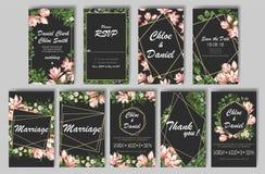 Carte botanique avec les fleurs sauvages, feuilles Concept d'ornement de ressort L'affiche florale, invitent Carte de voeux d?cor image libre de droits