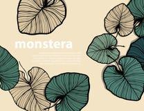 Carte botanique La copie de jungle de feuillage, banane à l'encre noire d'ensemble tiré par la main part sur le fond jaune Photo stock