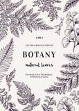Carte botanique pour avec des feuilles Image stock