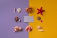 Carte cadeaux adornado con las conchas marinas alrededor Fotografía de archivo
