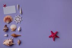 Carte cadeaux avec l'étoile de la Mer Rouge Photographie stock