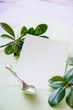 Carte cadeaux blanco en blanco imagen de archivo