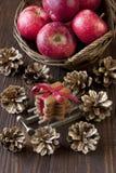 Carte cadeaux de Noël avec la composition en vacances Photo stock