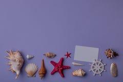 Carte cadeaux et coquillages Photographie stock
