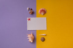 Carte cadeaux llano compuesto con las conchas marinas Fotos de archivo
