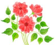 Carte colorée de fleur Photo libre de droits