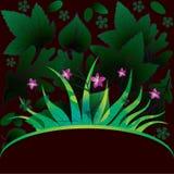 Carte décorative avec l'herbe Photos stock