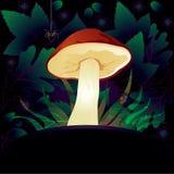 Carte décorative avec le champignon de couche Photo libre de droits