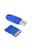 Carte d'écart-type et disque d'USB Photos stock