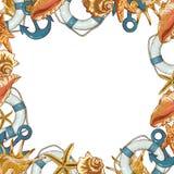 Carte d'été avec des coquilles de mer, ancre, ligne de sauvetage Photographie stock