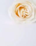 Carte d'amour de beauté Photos libres de droits
