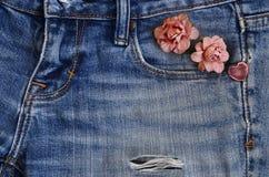 Carte d'amour de jeans de poche Photographie stock